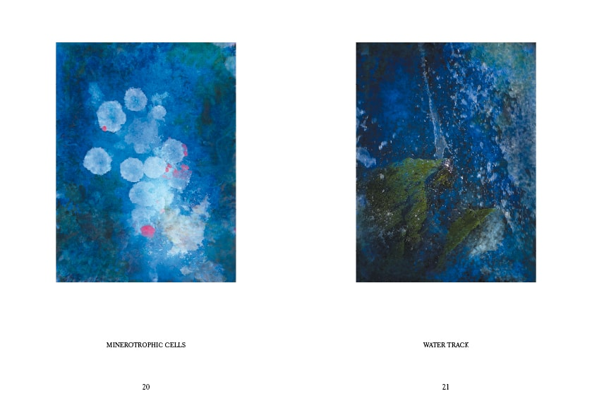 Typsetting of Mamba, an exhibition catalogue by Alice Starmore